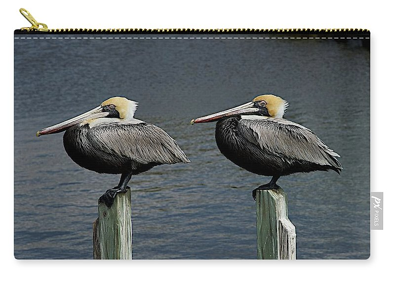 Birds Carry-all Pouch featuring the photograph Patient Pair by Joseph Yarbrough