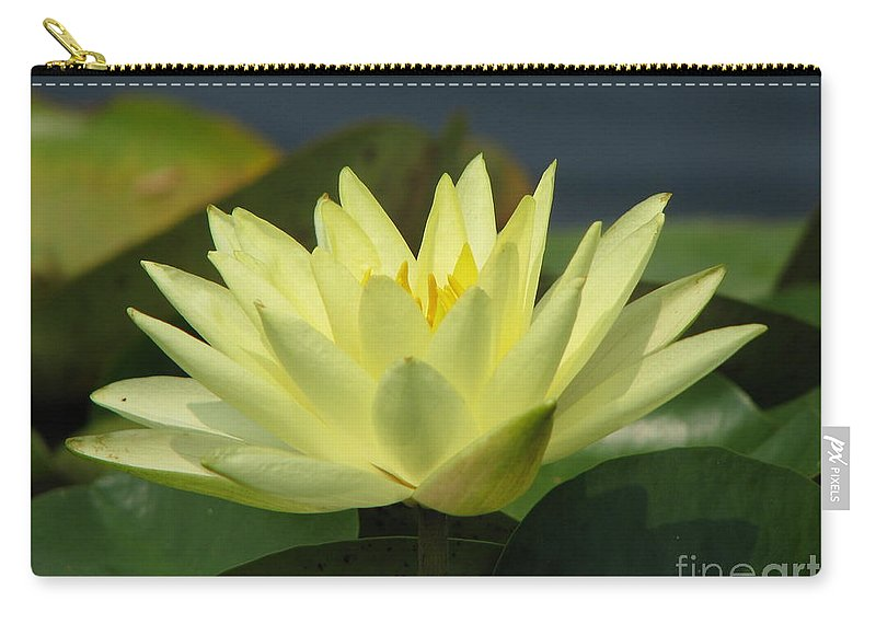 Lillies Carry-all Pouch featuring the photograph Peace by Amanda Barcon