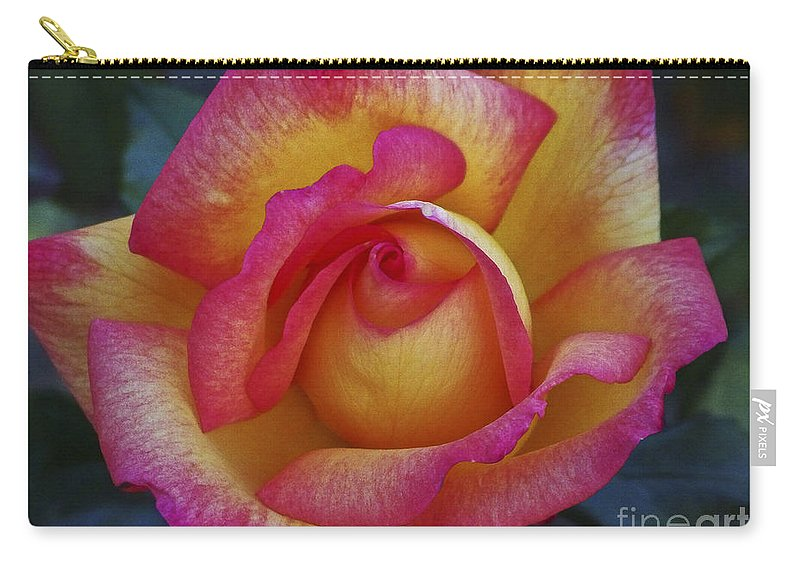 Flowers; Roses; Nature; Pink; Yellow Carry-all Pouch featuring the photograph Peace In Floral Format by Kathy McClure