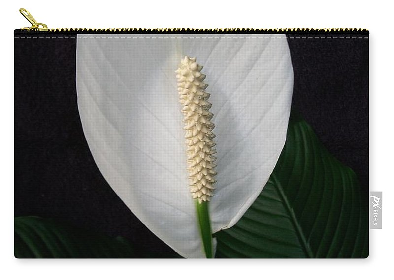 Lily Carry-all Pouch featuring the photograph Peace Lily by Sharon Duguay