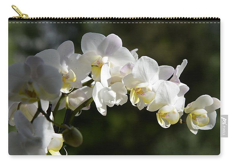 Fine Carry-all Pouch featuring the photograph Peace Love Happiness 1 by Teo SITCHET-KANDA