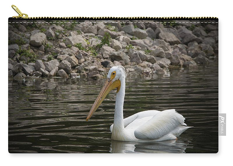 Pelican Carry-all Pouch featuring the photograph Peaceful Pelican by Jayne Gohr