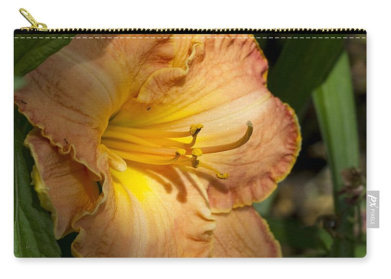 Hemerocallis Carry-all Pouch featuring the photograph Peach Daylily Delight by Kathy Clark