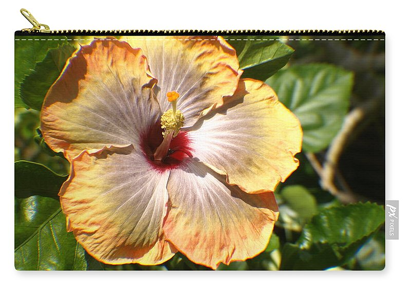 Flower Carry-all Pouch featuring the photograph Peach Flower by Jo Jurkiewicz