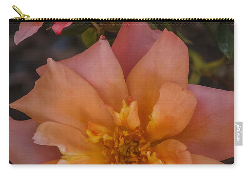 Florida Carry-all Pouch featuring the photograph Peach Rose by Jane Luxton