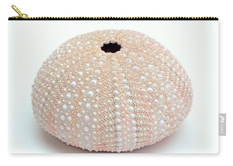 Sea Urchin Carry-all Pouch featuring the photograph Peach Sea Urchin White by Jennie Marie Schell