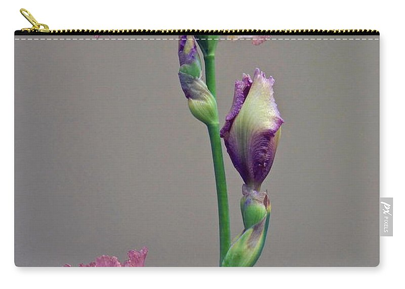 Iris Carry-all Pouch featuring the photograph Peachy Prize Winning Iris by Byron Varvarigos
