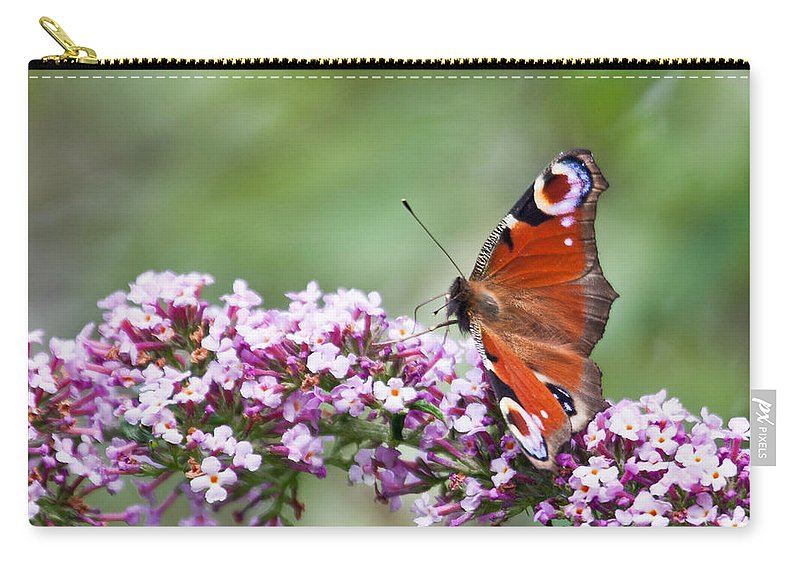 Butterfly Carry-all Pouch featuring the photograph Peacock Butterfly Inachis Io On Buddleia by Liz Leyden