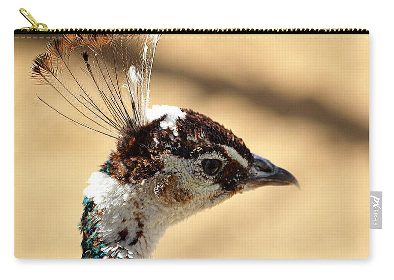 Birds Carry-all Pouch featuring the photograph Peacock Crest by AJ Schibig