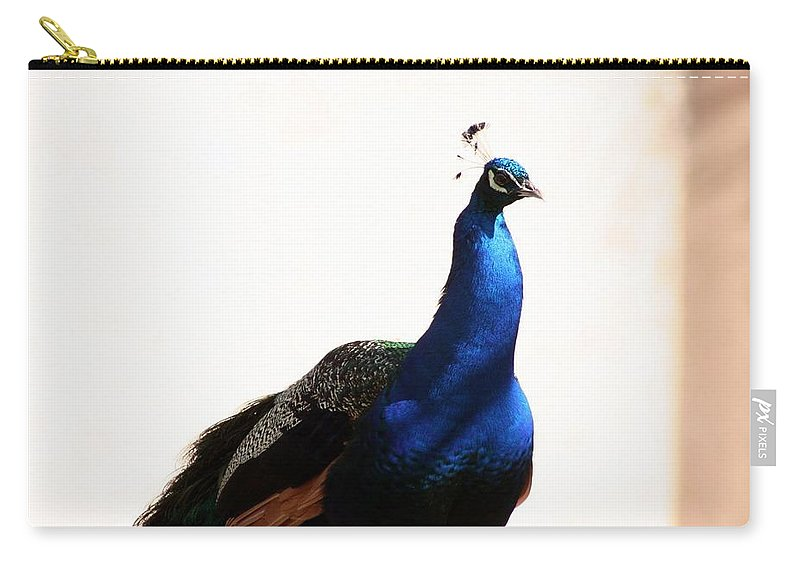 Animal Carry-all Pouch featuring the photograph Peacock I by T Reich