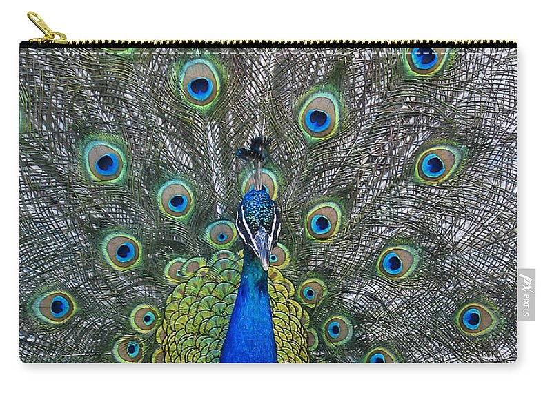 Peacock Carry-all Pouch featuring the photograph Peacock by Steven Ralser