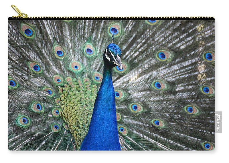 Peacock Carry-all Pouch featuring the photograph Peacock Up Close by Tracy Winter