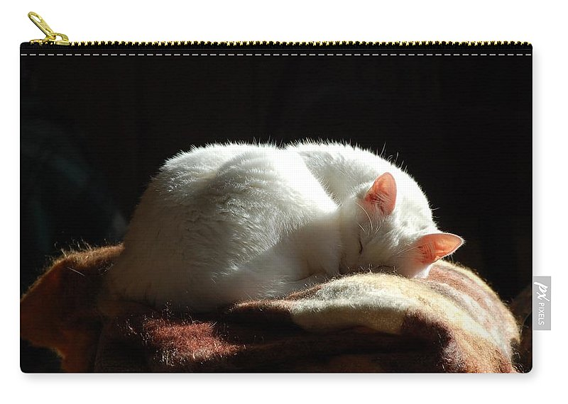 Cat Carry-all Pouch featuring the photograph Pearl by Valerie Kirkwood