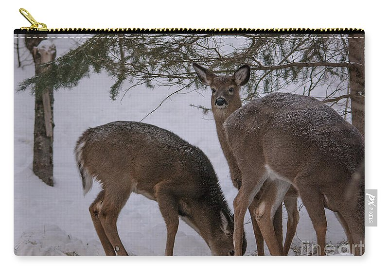Carry-all Pouch featuring the photograph Peeking Deer by Cheryl Baxter