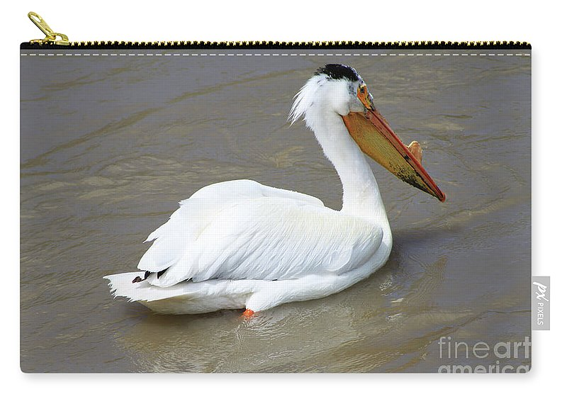 Bird Carry-all Pouch featuring the photograph Pelecanus Eerythrorhynchos by Alyce Taylor