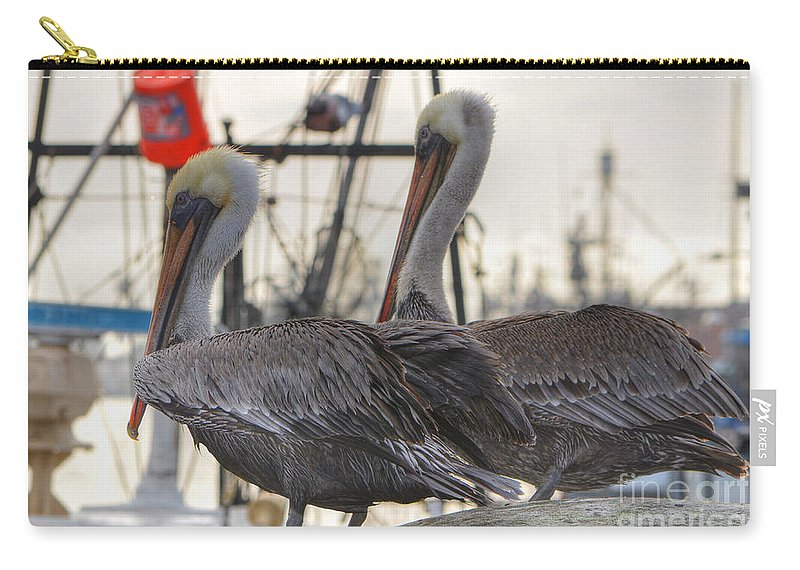 Pelican Carry-all Pouch featuring the photograph Pelican Duo by Donna Greene
