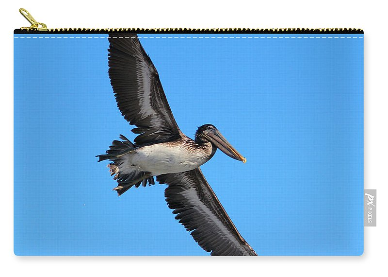 Pelican Carry-all Pouch featuring the photograph Pelican Flying High by Cynthia Guinn