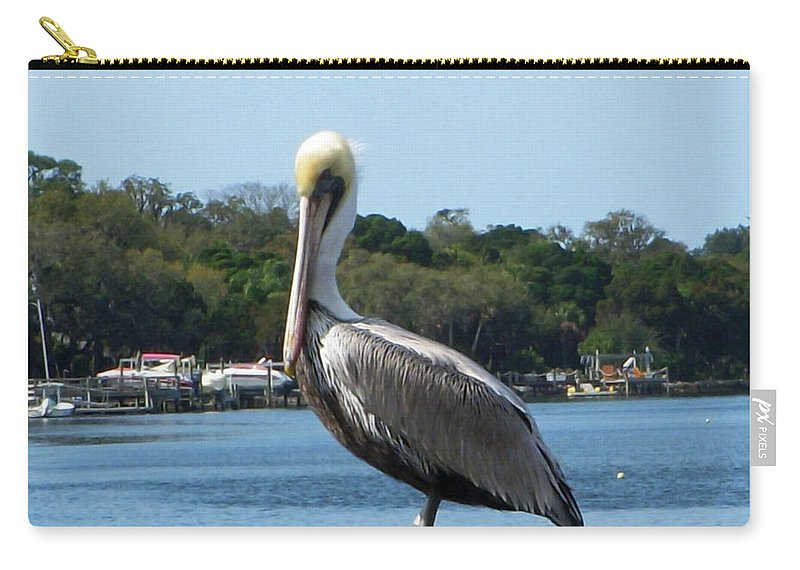 Pelican Carry-all Pouch featuring the photograph Pelican Point by Aimee L Maher ALM GALLERY