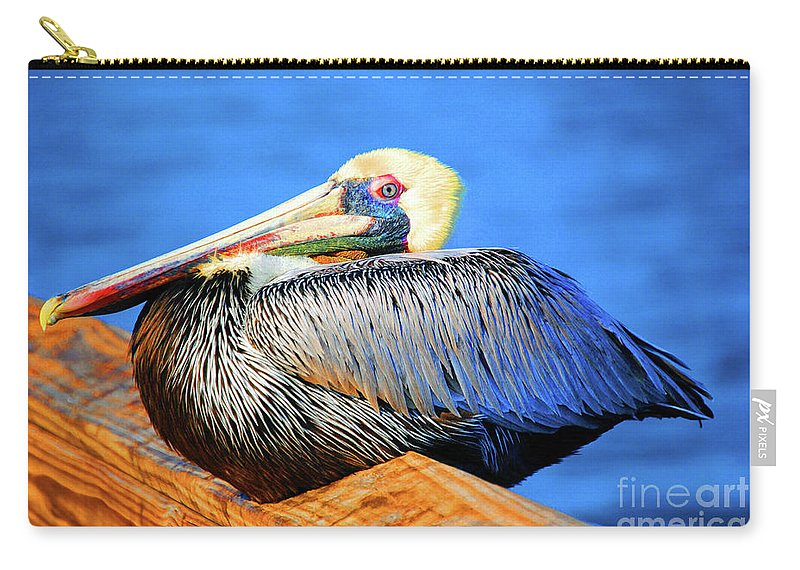 Pelican Carry-all Pouch featuring the photograph Pelican Rest by Jost Houk