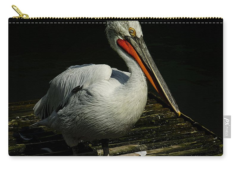 Africa Carry-all Pouch featuring the photograph Pelicans by TouTouke A Y
