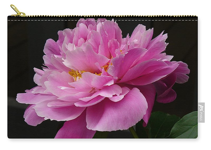 Flowers Carry-all Pouch featuring the photograph Peony Blossoms by Lingfai Leung