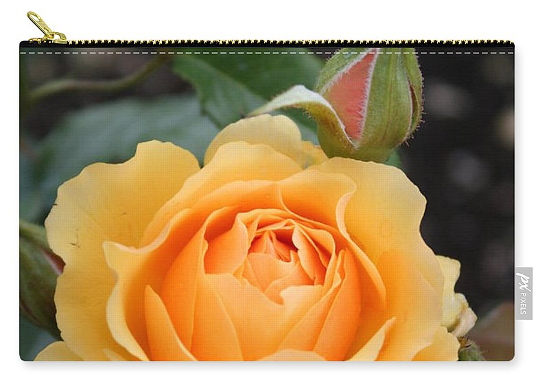 Rose Carry-all Pouch featuring the photograph Perfect Rose by Christiane Schulze Art And Photography