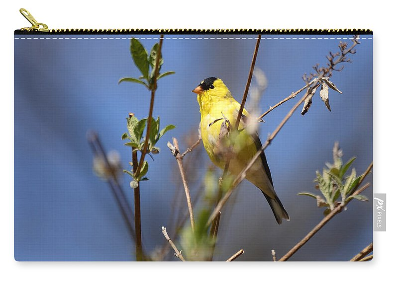 Goldfinch Carry-all Pouch featuring the photograph Perfect Shade Of Yellow by Lori Tambakis