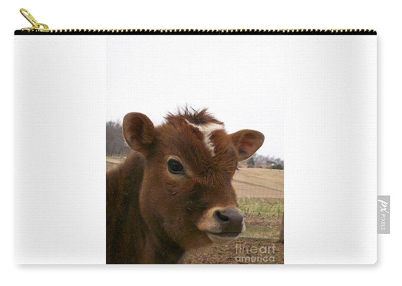 Cow Carry-all Pouch featuring the photograph Perfect Stance by Sara Raber