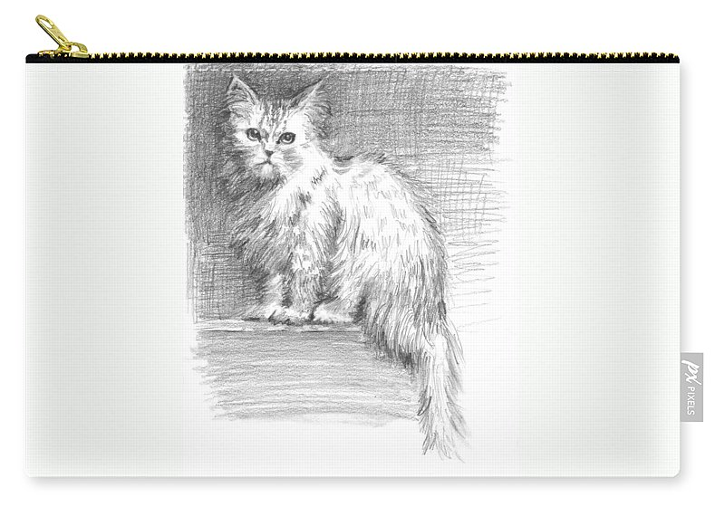 Persian Cat Carry-all Pouch featuring the drawing Persian Cat by Sarah Parks
