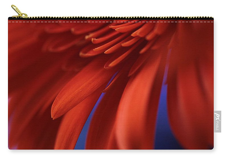 Connie Handscomb Carry-all Pouch featuring the photograph Petals by Connie Handscomb