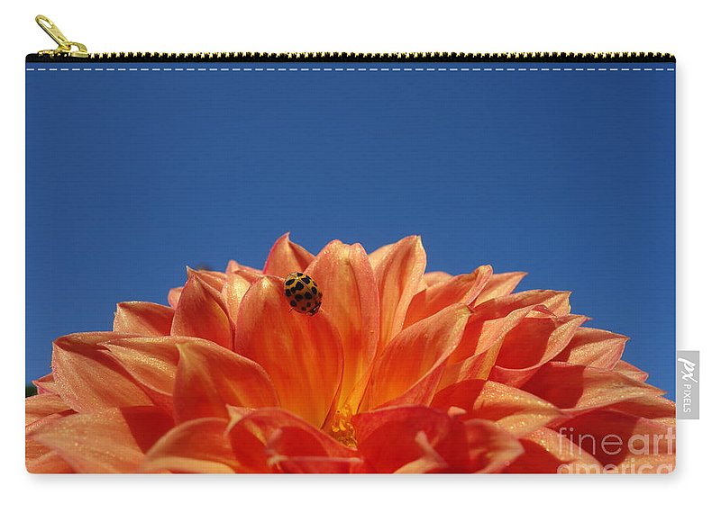 Petals For A Lady Carry-all Pouch featuring the photograph Petals For A Lady by Jacqueline Athmann