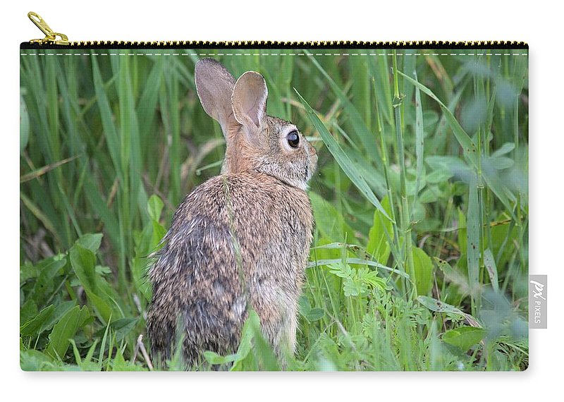 Rabbit Carry-all Pouch featuring the photograph Peter Rabbit by Bonfire Photography