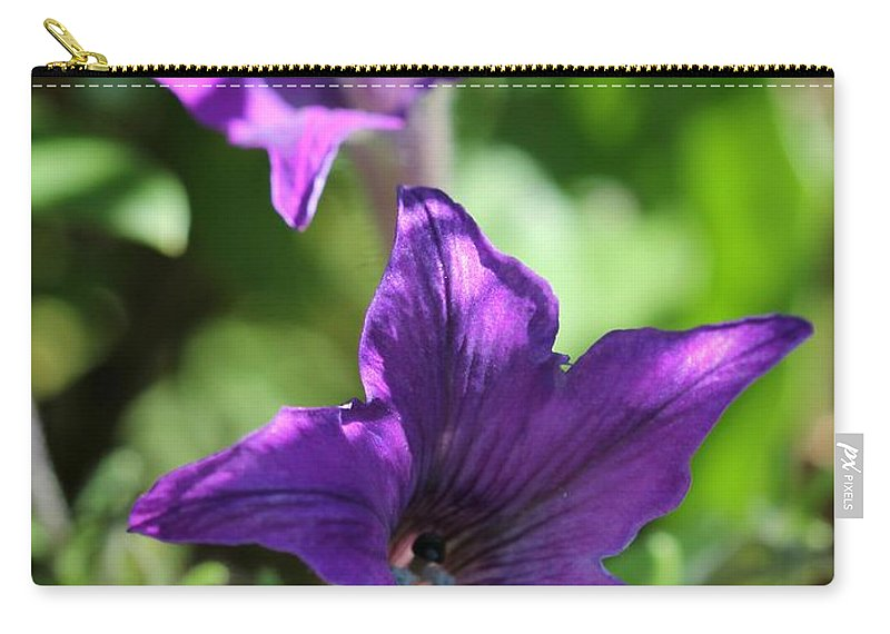 Mccombie Carry-all Pouch featuring the photograph Petunia Hybrid From The Sparklers Mix by J McCombie