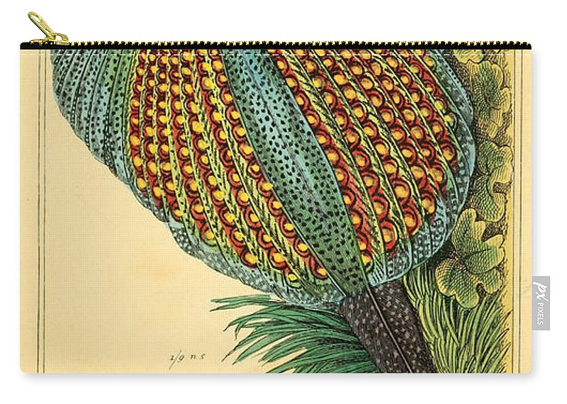 Pheasant Carry-all Pouch featuring the painting Pheasant 1837 by Philip Ralley