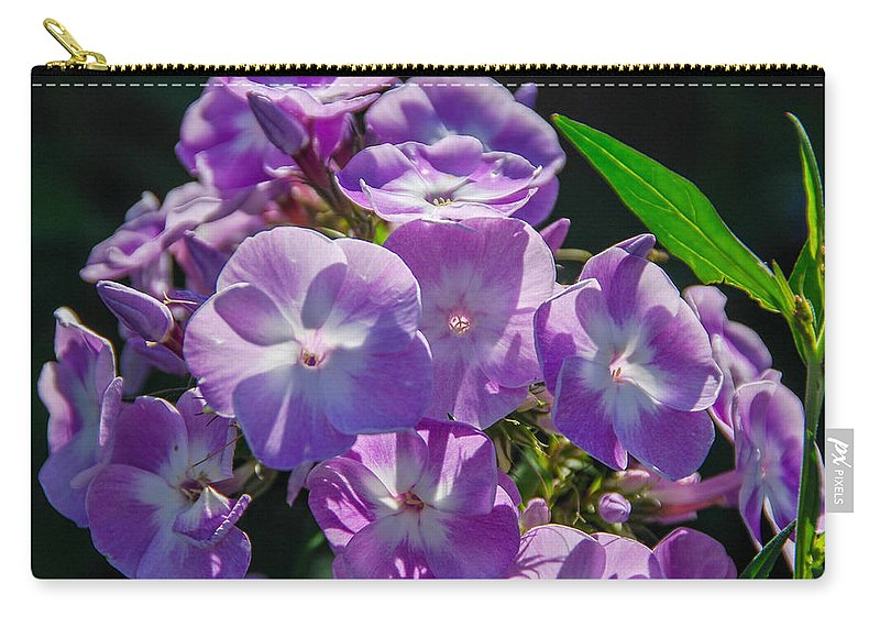 Flowers Carry-all Pouch featuring the photograph Phlox 7128 by Guy Whiteley