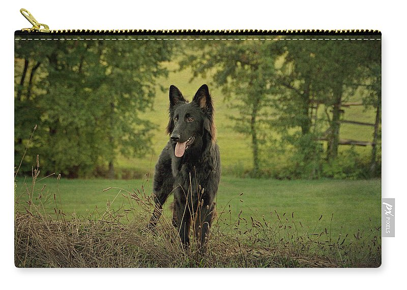 German Shepherd Carry-all Pouch featuring the photograph Phoenix - Early Evening by Sandy Keeton