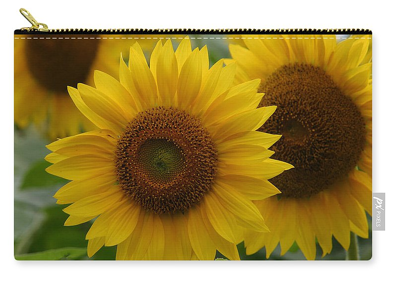 Denyse Duhaime Photography Carry-all Pouch featuring the photograph Pick Me by Denyse Duhaime