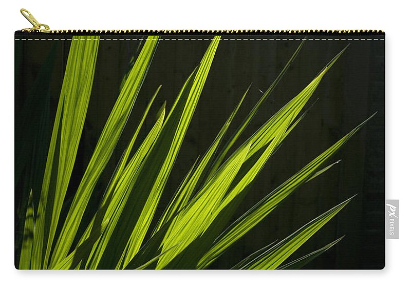 Reeds Carry-all Pouch featuring the photograph Piercing Green by Peter Lloyd