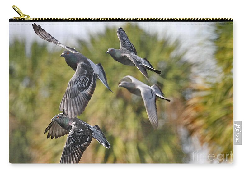Pigeon Carry-all Pouch featuring the photograph Pigeon Brigade by Deborah Benoit