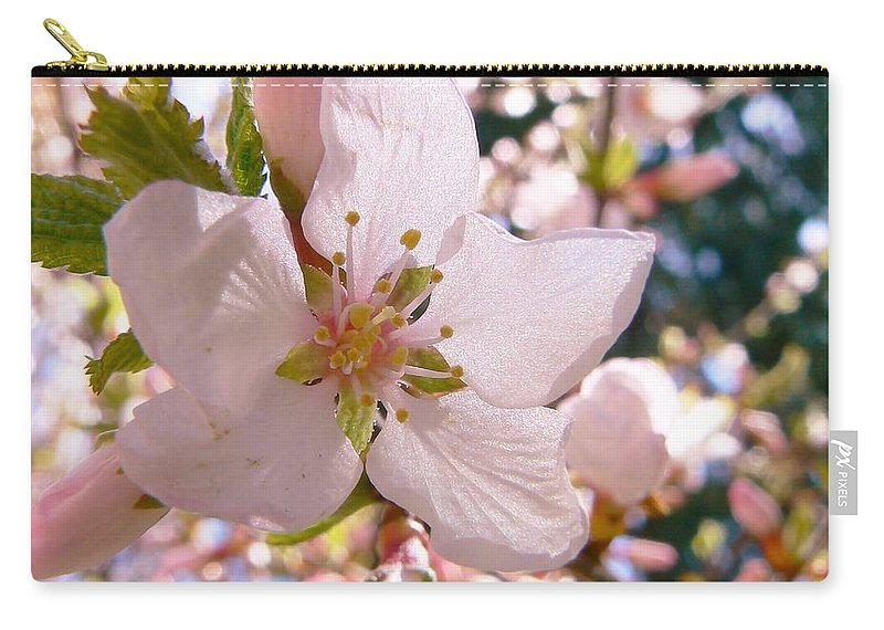 Pin Cherry Blooms Carry-all Pouch featuring the photograph Pin Cherry Blooms by Barbara St Jean