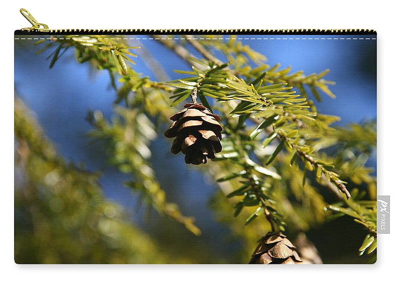Conifer Cone Carry-all Pouch featuring the photograph Pine Cone Blues by Neal Eslinger