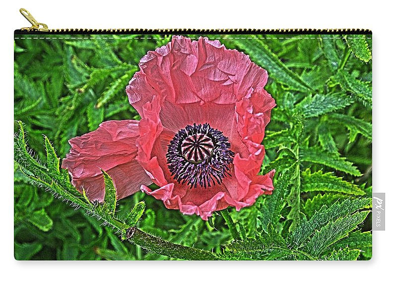 Flower Carry-all Pouch featuring the photograph Pink And Purple by Cathy Mahnke