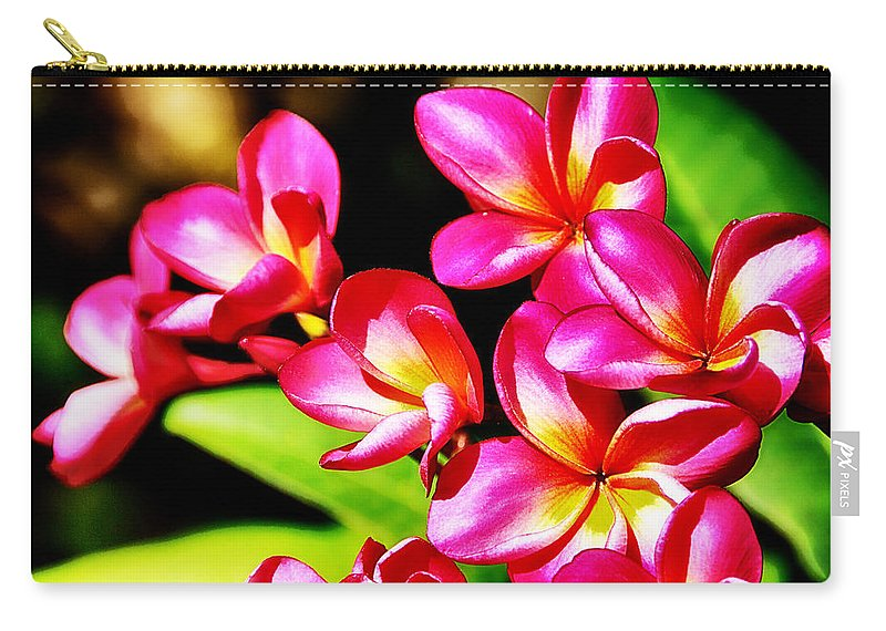 Pink Carry-all Pouch featuring the photograph Pink And Red Plumeria by Douglas Barnard
