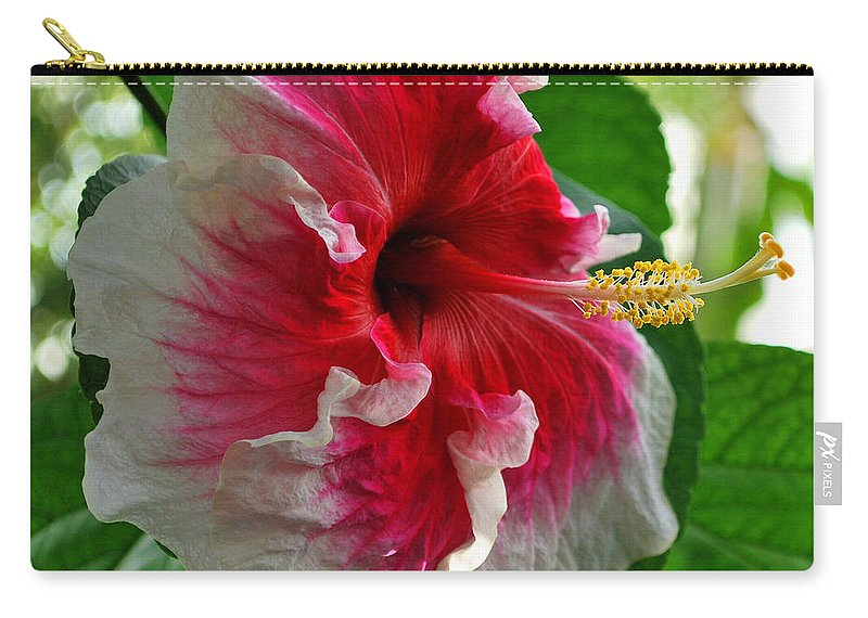 Hibiscus Carry-all Pouch featuring the photograph Pink And White Hibiscus by Nancy Mueller