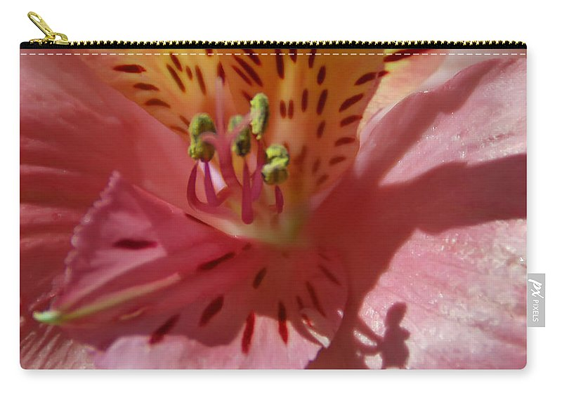 Flower Carry-all Pouch featuring the photograph Pink And Yellow by Aimee L Maher ALM GALLERY