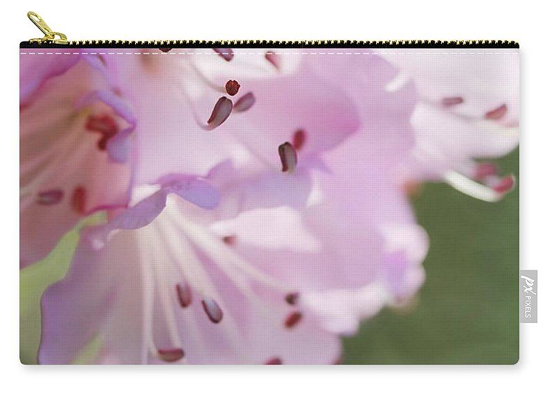 Azalea Carry-all Pouch featuring the photograph Pink Azalea Flowers In The Morning Light by Jennie Marie Schell