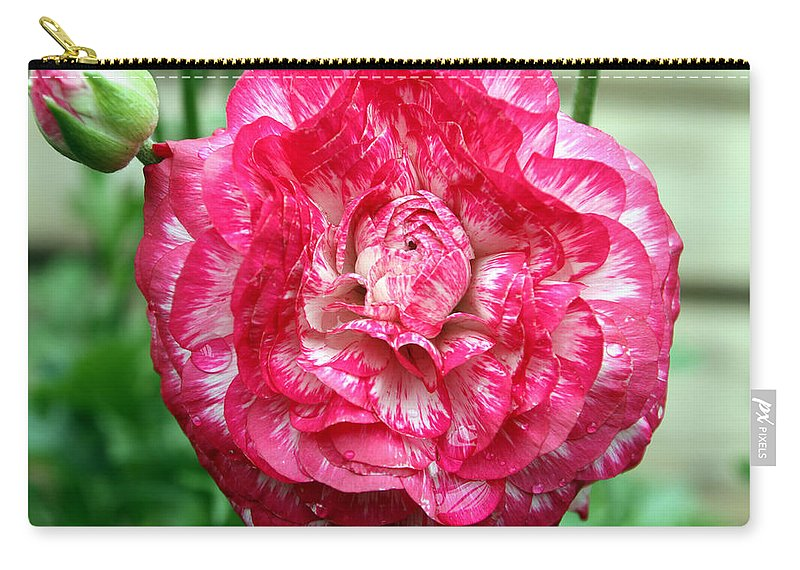Pink Carry-all Pouch featuring the photograph Pink Beauty by Bob Slitzan