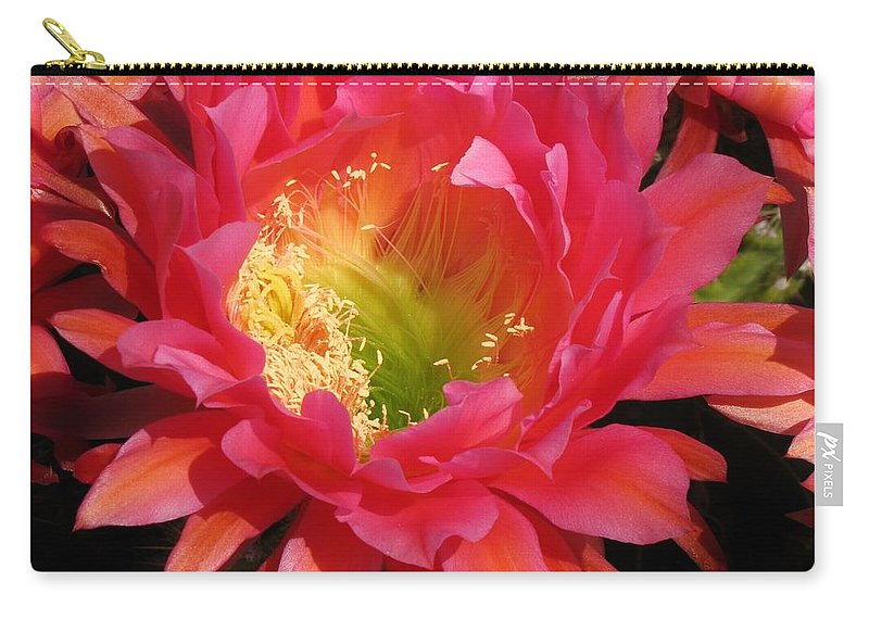 Cactus Flower Carry-all Pouch featuring the photograph Pink Cactus Flower by Michelle Cassella