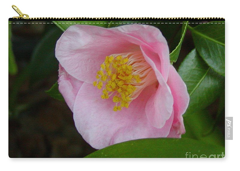 Camellia Carry-all Pouch featuring the photograph Pink Camellia About To Bloom by Jussta Jussta