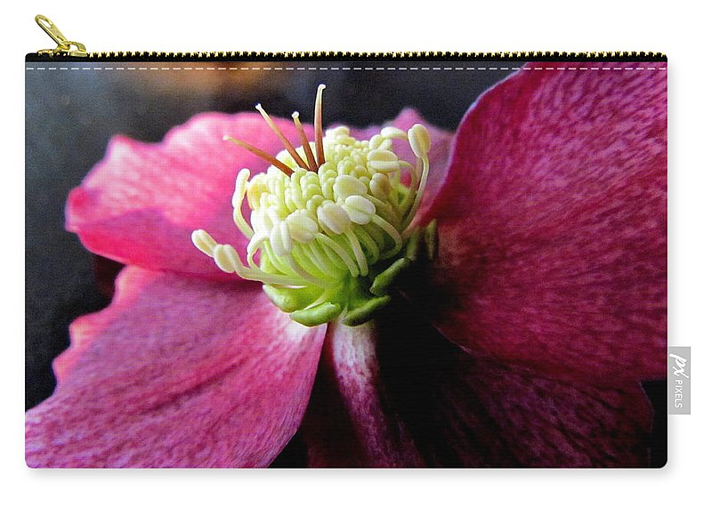 Flower Carry-all Pouch featuring the photograph Pink Camellia Flower by Joyce Woodhouse